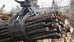 Un cinquième conflit commercial sur le bois d'œuvre sur le point d'être déclenché