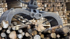 Québec assure l'industrie forestière de son soutien indéfectible