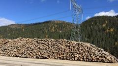 Hydro-Québec vend le bois de la Romaine à perte