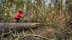 Les producteurs forestiers privés se mobilisent