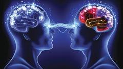 Nos cerveaux se synchronisent lorsque nous conversons