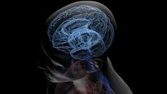 Football et encéphalopathie: une étude révèle des statistiques accablantes