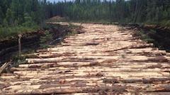 Le Conseil des Atikamekw d'Obedjiwan dénonce des coupes forestières sur son territoire
