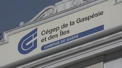 Contrer la violence sexuelle sur les campus de la Gaspésie et des Îles