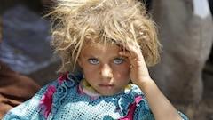 L'accueil des yézidis est une preuve que la démocratie fonctionne, dit Ambrose