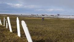 Les côtes de l'île Herschel, au Yukon, s'érodent rapidement