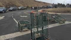 Les pêcheurs manifestent à nouveau près des bureaux de Pêches et Océans à T.-N.-L.
