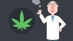 Cannabis au volant: quelle sera la limite légale?