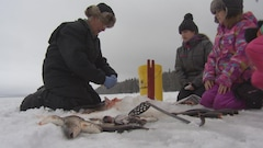La pêche blanche est gratuite partout en Ontario en ce long week-end du Jour de la famille
