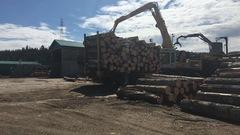 Histoire d'une renaissance: la scierie de Petit-Saguenay