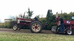 La tire de tracteurs antiques a la cote dans la Mitis