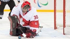 Victoire écrasante du Canada face à la Suède en parahockey