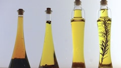 Au Canada, bon nombre d'huiles d'olive ne respecteraient pas les standards de qualité