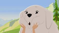 Belle chien de berger