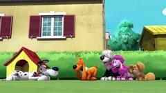 Cinq chiens à la maison