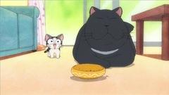 Le chat noir rencontre Chi