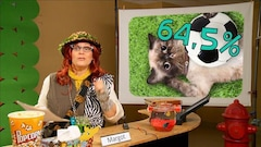 Les animaux domestiques bons pour la santé- Bulletin de nouvelles