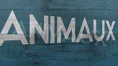 Épisode 9 : Les animaux