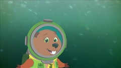 Médusés devant la méduse