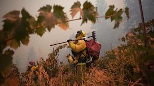 Un pompier chargé d'équipement se trouve dans un vignoble. Il regarde vers le ciel opaque en raison de la fumée provenant de l'incendie.