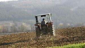Un tracteur dans un champ