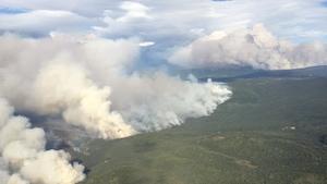 Vue aérienne d'une forêt d'où s'élève de gros nuages de fumée.