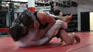 La popularité des arts martiaux mixtes ne se dément pas au Québec.