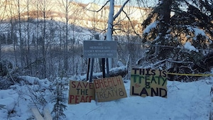 Des pancartes d'opposants au projet de barrage du site C en Colombie-Britannique.
