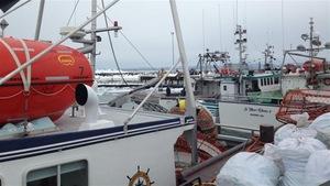 Bâteaux de pêche à Sept-Îles