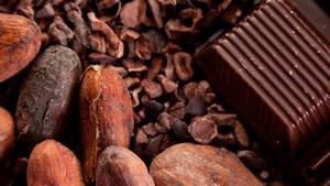 Des fèves de cacao et un carré de chocolat