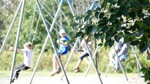 En avant plan et au foyer, une branche d'abre. En arrière-plan, et hors-foyer, des enfants se balancent par une journée ensoleillé.