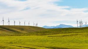 Un champ d'éoliennes près de Pincher Creek, dans le sud de l'Alberta.