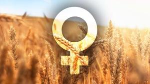 Signe de la femme avec un champ de blé en arrière-plan.