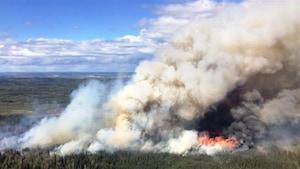 Image d'un feu de forêt à Stoddart Creek, au nord-est de la Colombie-Britannique, en 2016.