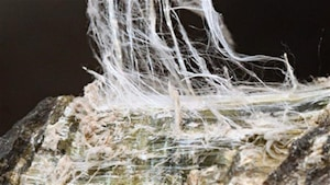 Fibre d'amiante chrysotile