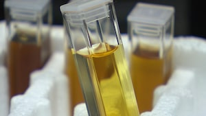 Des fioles de sirop d'érable sont parfois examinées en laboratoire.