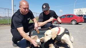 Des maîtres-chiens formés à Québec