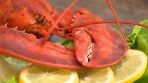 Du homard cuit, dans une assiette, avec des tranches de citron.