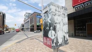 Une boîte de contrôle des feux de circulation interprète l'histoire de la crosse devant le parc Lansdowne.