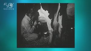 Une images d'archives en noir et blanc de la traite d'une vache laitière à la main,