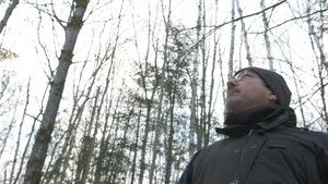Christian Messier nous invite à bien choisir les essences d'arbres pour le reboisement.