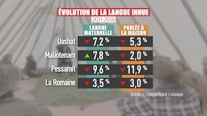 L'évolution de la langue innue entre 2011 et 2016.