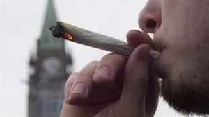 Le projet de loi sur la marijuana assorti de peines sévères