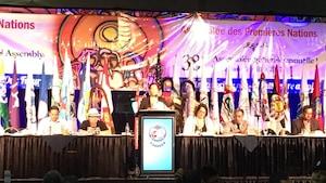 La commissaire de l'enquête sur les femmes autochtones Michèle Audette s'adresse aux membres de l'Assemblée des Premières Nations.