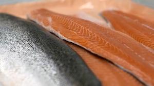 ogm saumon epicerie