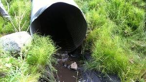 Les eaux noires de la rivière Tulameen découlent d'un tuyau