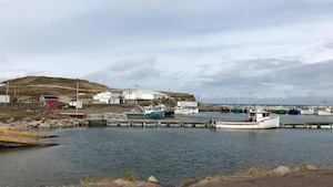 Le port de Grosse-Île.