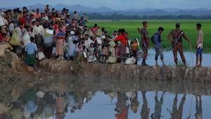 Flot de réfugiés à la frontière du Myanmar et du Bangladesh.
