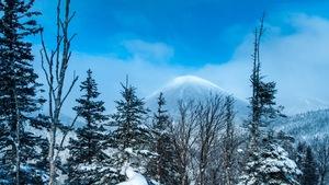 Un paysage de la réserve Matane. Tout au fond: le mont Coleman.
