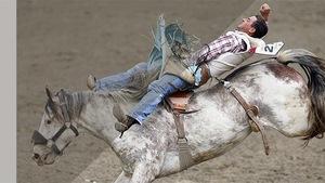 Un homme fait du rodéo sur un cheval